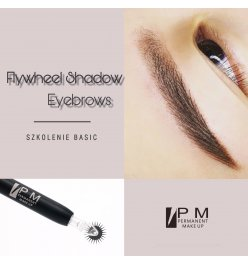 Flywheel Shadow Basic