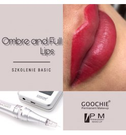 Ombre Lips + Full Lips Basic